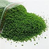 TLBBJ Juguetes artesanales 100 g 0.8-1.0mm Modelo de Hierba en Polvo, Polvo de árbol de...